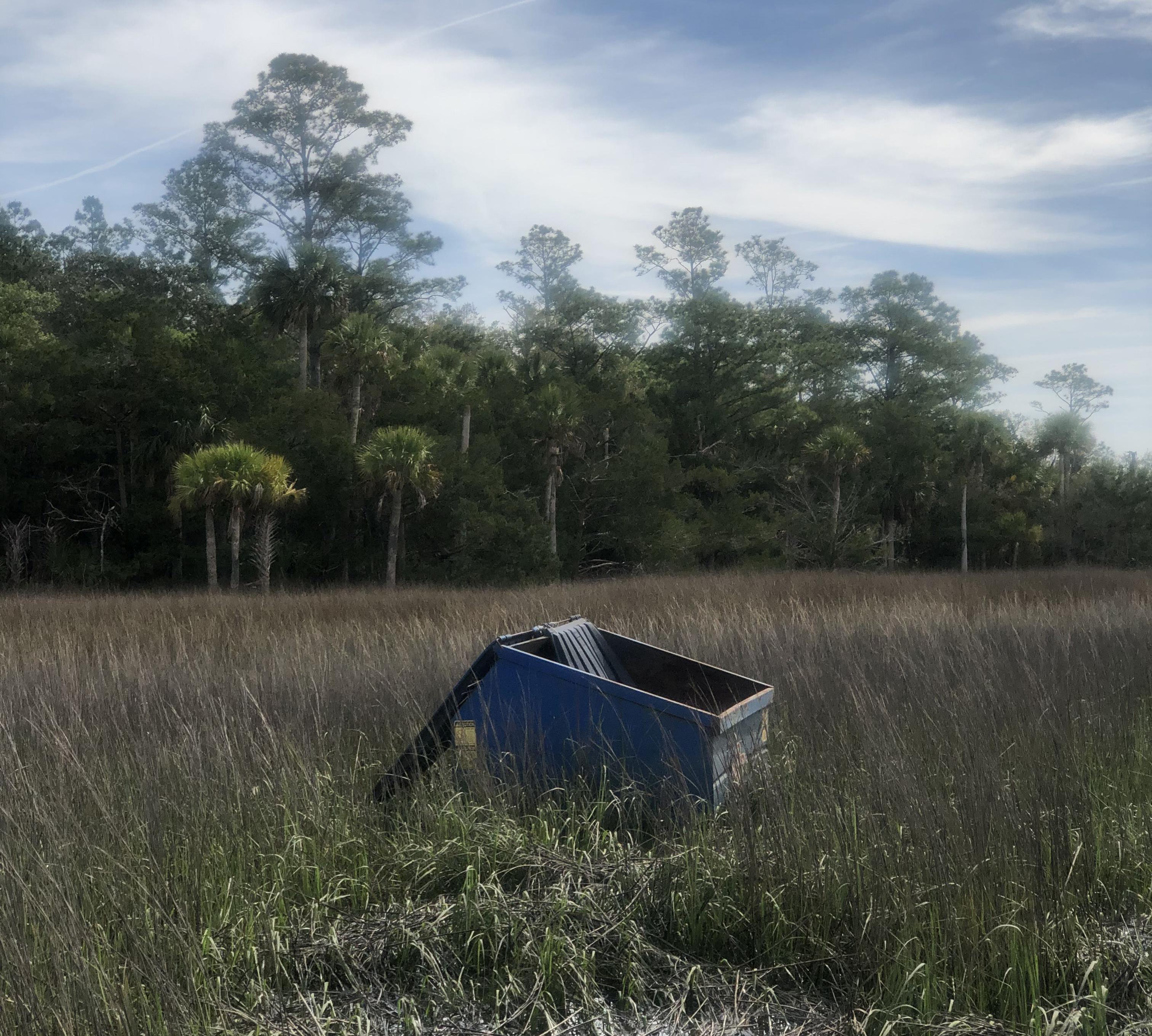 A dumpster in a marsh.