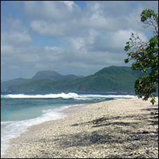 An oil-free beach with waves rolling in. Mountains in background.
