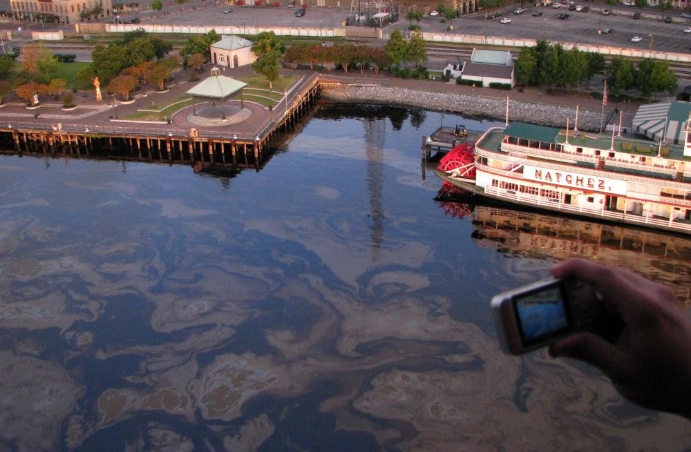 Oil in water.