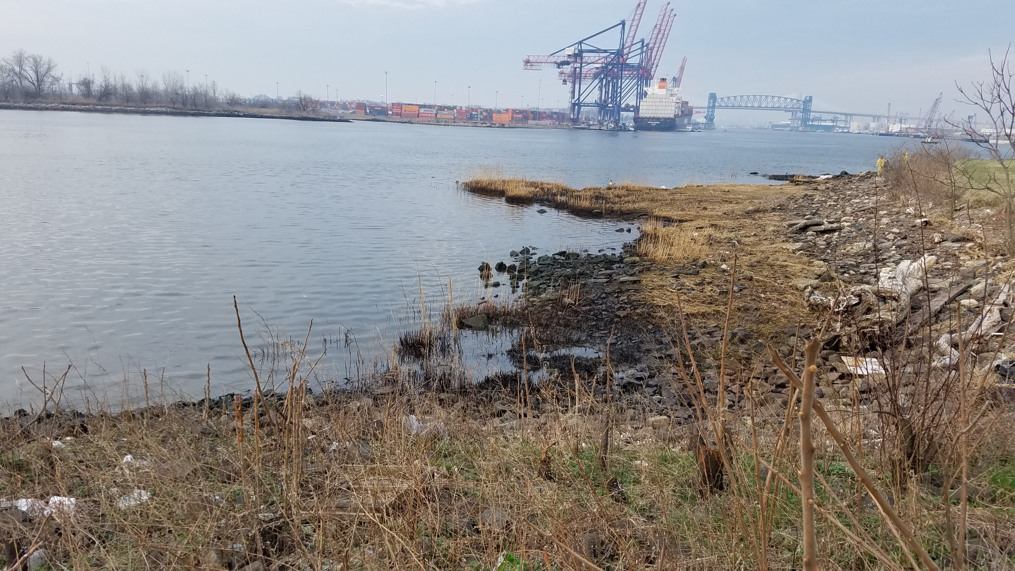 An oiled shoreline with industrial structures in the background.