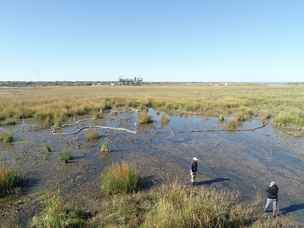 Area with little growth within a marsh.