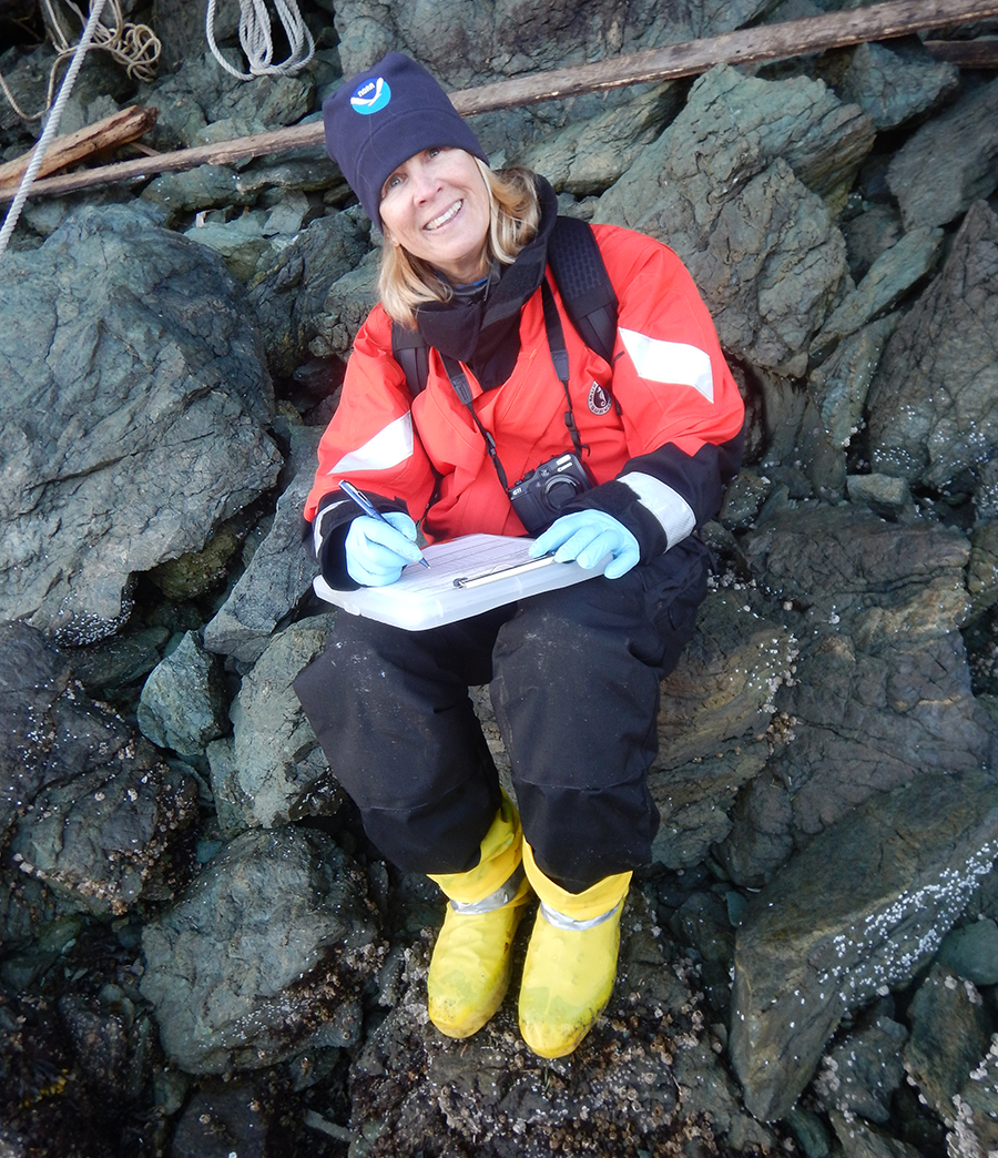 A woman sitting on a rocky shoreline holding a clipboard.