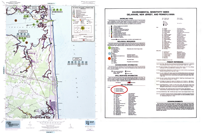 The 1985 ESI map of Indian River Bay and the accompanying information from the back of the map.