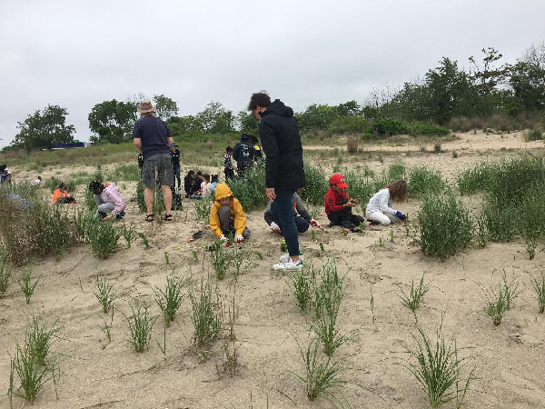 Group of children working on hte beach.