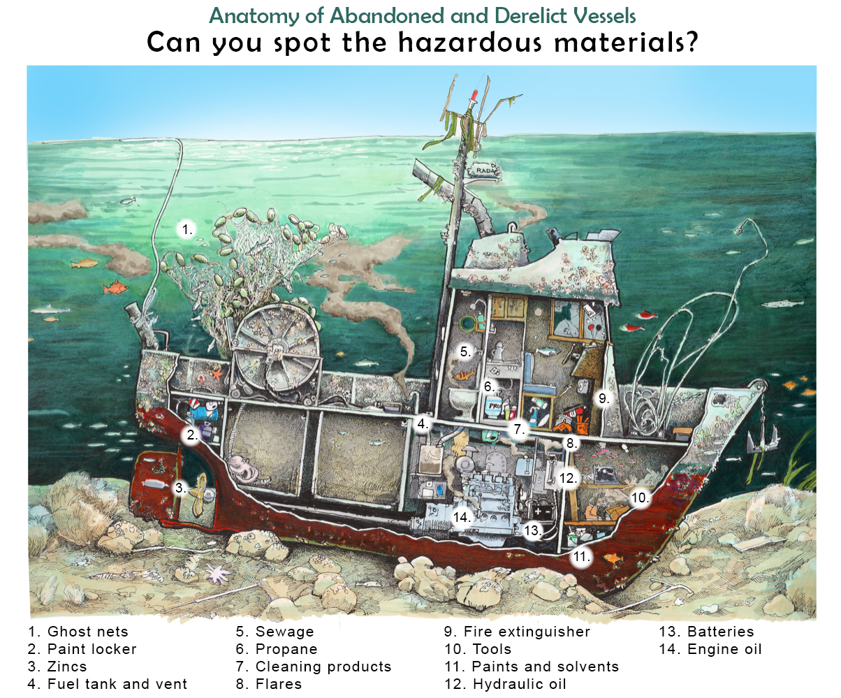 "An illustration of a sunken vessel with a cutaway showing various items inside the vessel. The illustration is labeled ""Anatomy of Abandoned and Derelict Vessels: Can you spot the hazardous materials?"" with a numbered list corresponding to the illustration. The items include: 1. Ghost nets, 2. paint locker, 3. zincs, 4. fuel tank and vent, 5. sewage, 6. propane, 7. cleaning products, 8. flares, 9. fire extinguisher, 10. tools, 11. paints and solvents, 12. hydraulic fluid, 13. batteries, 14. engine oil."