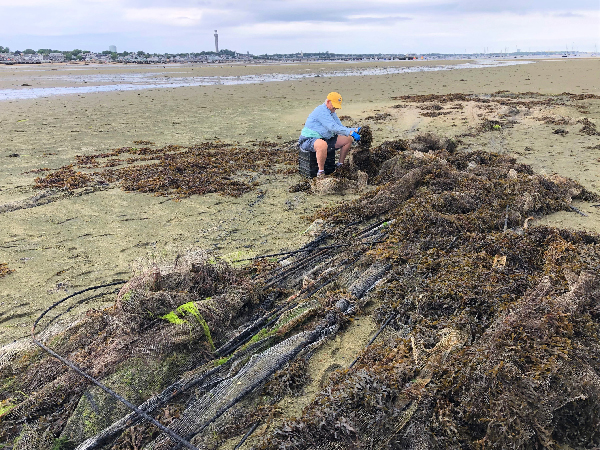 Person working with net debris on a beach.