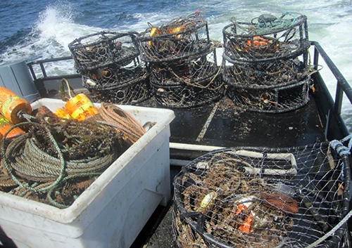 Crab pots on the deck of a boat.
