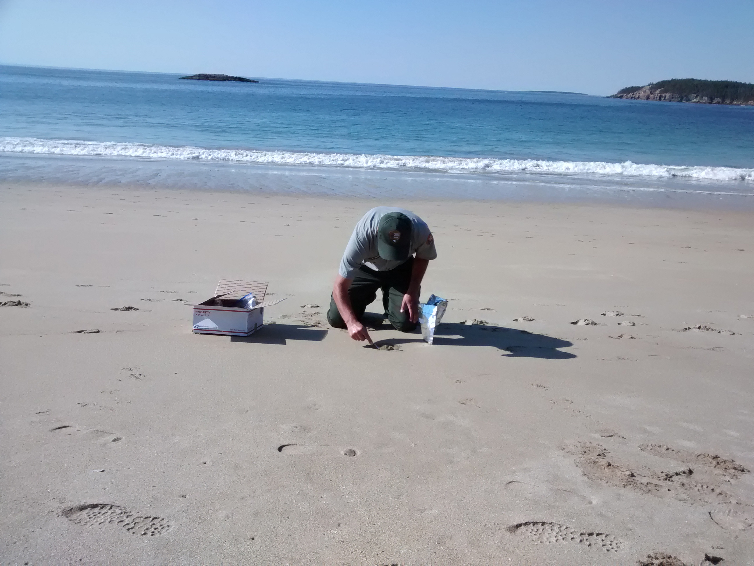 Man kneeling on beach.