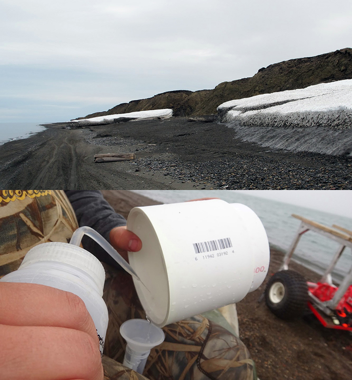 Snow on the shoreline below eroding tundra on the Chukchi coast and close-up of person squirting liquid into a cup to flush plankton into a test tube.