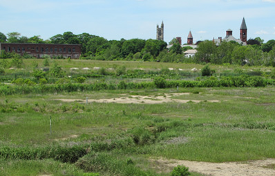 After restoration: A newly created northern salt marsh, shown in June 2013, at the site of the former Atlas Tack factory. Bare spots are filling in but a fully covered wetland landscape is likely still a few years away. (NOAA)