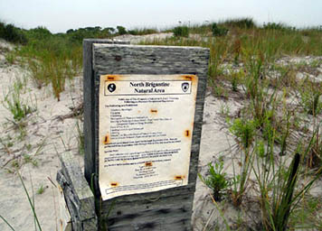 Guidelines for visitors reduce the risk of injury or stress to the North Brigantine Natural Area.