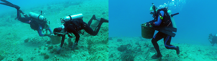 Left: Two divers unload a basket full of loose corals into a safe holding area so that they can be returned after the rubble from the grounding site is removed, minimizing further impacts. Right: A diver moves a collection basket full of loose corals to a safe area.