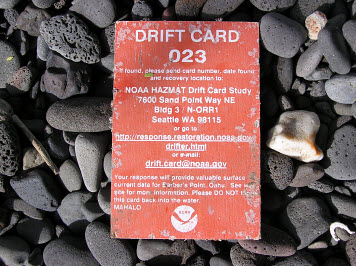 Photo: A weathered, orange drift card on a cobble beach.