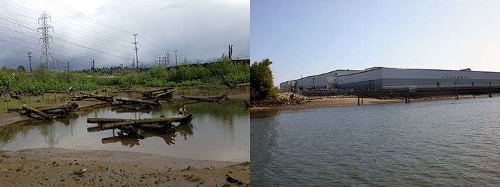 An estuary with mature vegetation and large logs strewn about the water and a river shoreline with a factory.