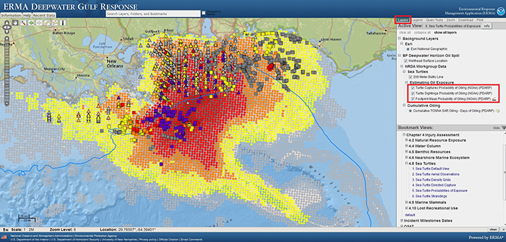 View of Environmental Response Management Application showing map of Gulf of Mexico with varying probabilities of oil presence and sea turtle oiling during the Deepwater Horizon oil spill with data source information.