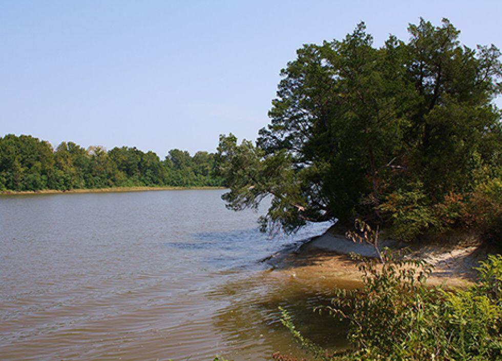 Tombigbee River in Alabama.