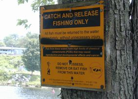 Sign by Hudson River warning against eating contaminated fish.