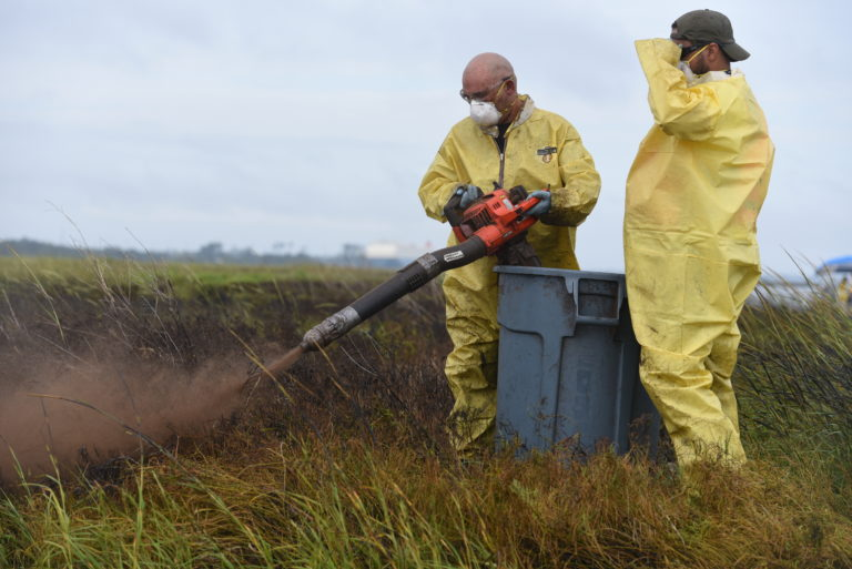 Twp people in protective gear spraying marsh grass.