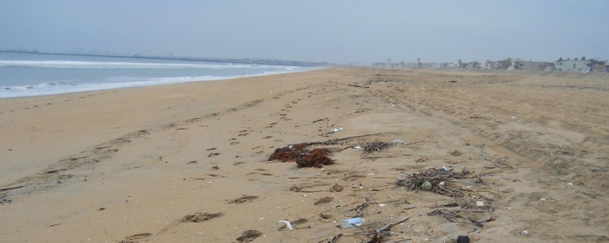 Marine debris on a beach.