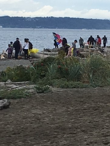 People collecting debris on a beach.