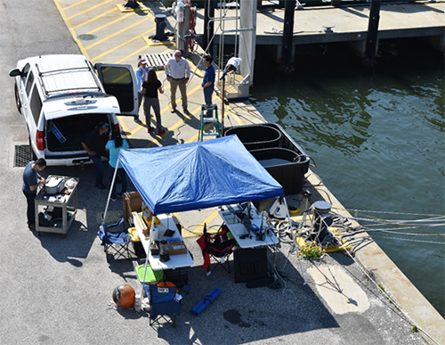 Overhead view of four people, a tent, and equipment on a dock.