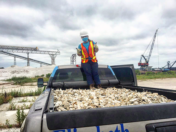 Person standing in a large container of oyster shells.