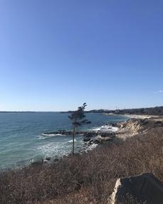 Beach view at water's edge.