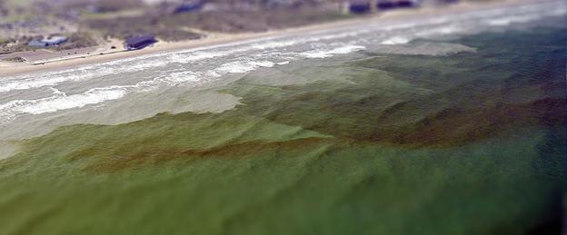 Discolored water near the beach.