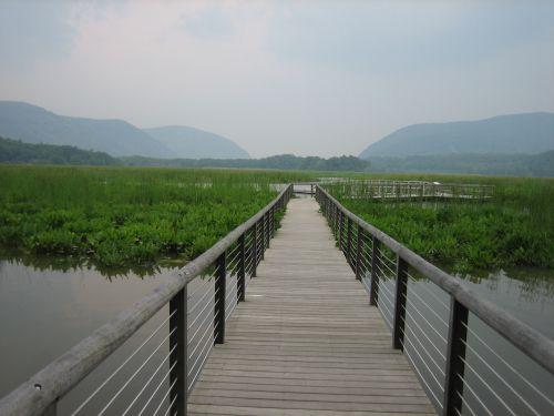 Footbridge over water.