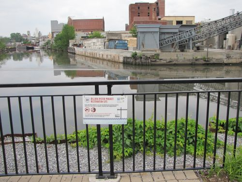 Sign posted on a fence; urban riverfront in background.