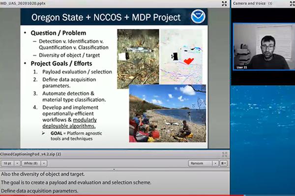 Screenshot of a virtual presentation.