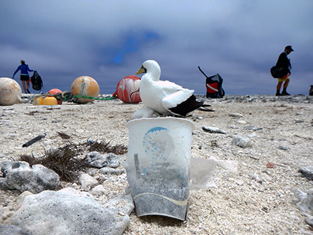 People and a bird on a beach with plastic debris.