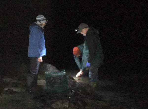 Two people looking at a mussel cage in the dark.