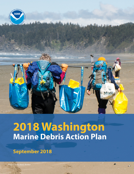 Cover of a report showing individuals carrying bags of marine debris.