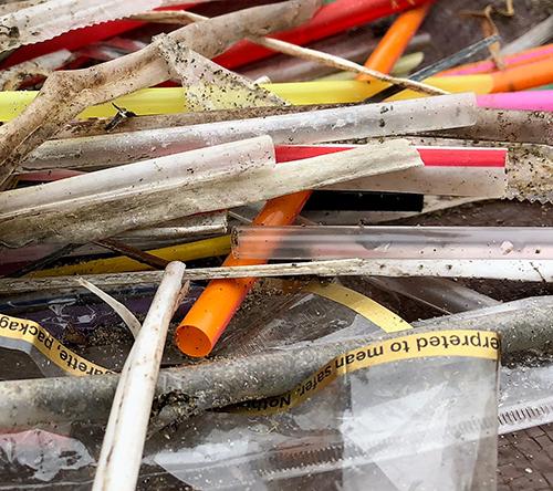 Close-up image of plastic straws.