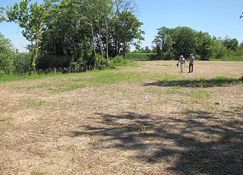 A dry field with two people in background.