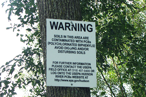 Contamination warning sign posted on a tree.