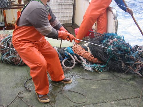 Two people untangling from a net on the deck of a vessel.