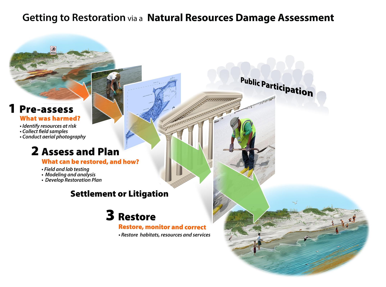 Process diagram of steps taken to achieve restoration.