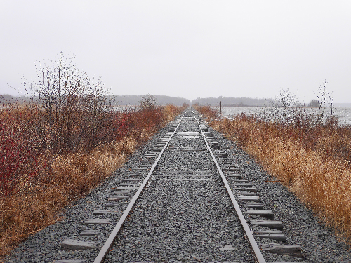Railroad tracks receding into the distance.