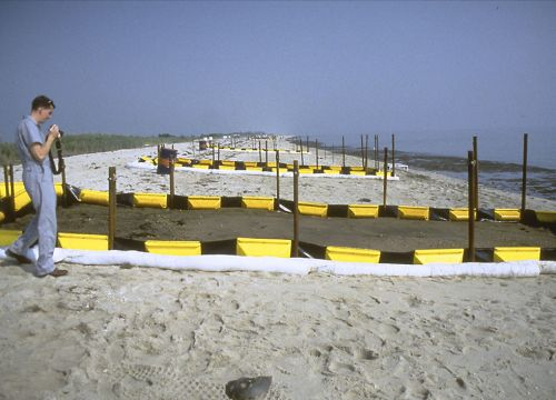 20 marked plots on a beach.