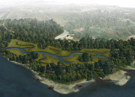 Illustration of healthy forested habitat along a river bend.