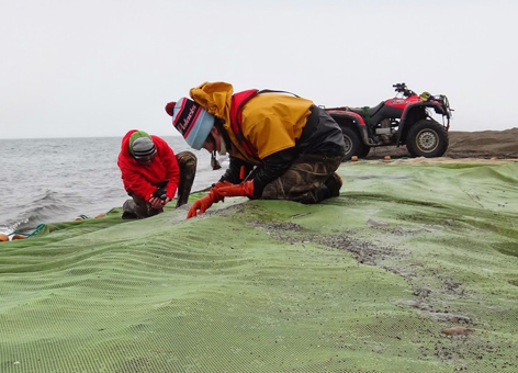 Scientists collect young fish and plankton from a net on the Alaskan coast.