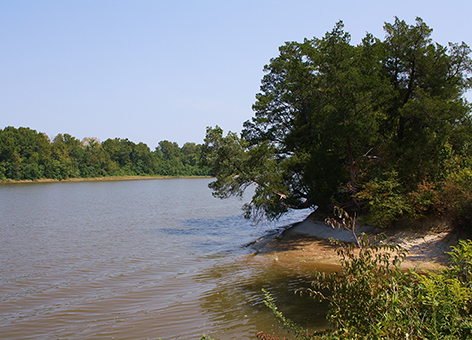 Tombigbee River in Alabama.
