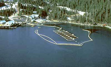 Boom floating on the water surface to protect a salmon hatchery from oil.