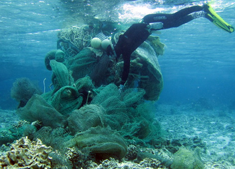 A diver removes a mass of nets from a coral reef near Midway Atoll.
