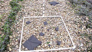 Black squares inside a square of PVC piping on the ground.