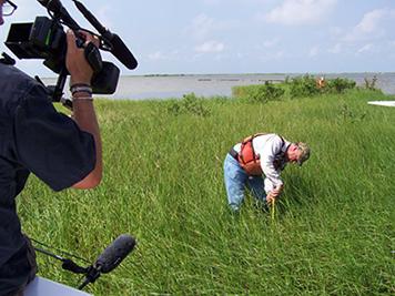 Media observing shoreline surveys in Barataria Bay, La.