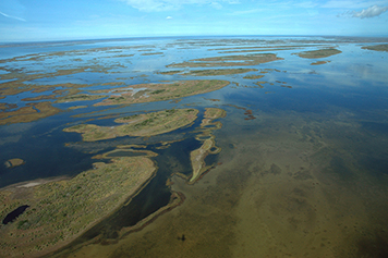 Aerial view of estuary.