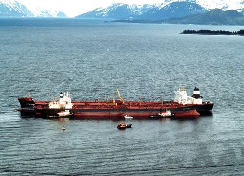 exxon valdez essay This summary will briefly discuss three topics: a) the oil spill, b) the environmental damage and clean up, and c) the insurance coverage settlements.
